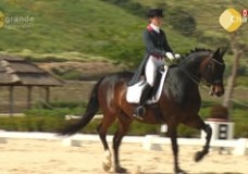 A Dressage Test – Explained in detail by Georg Prause – Dos Lunas Polo & Dressage Club – 2013